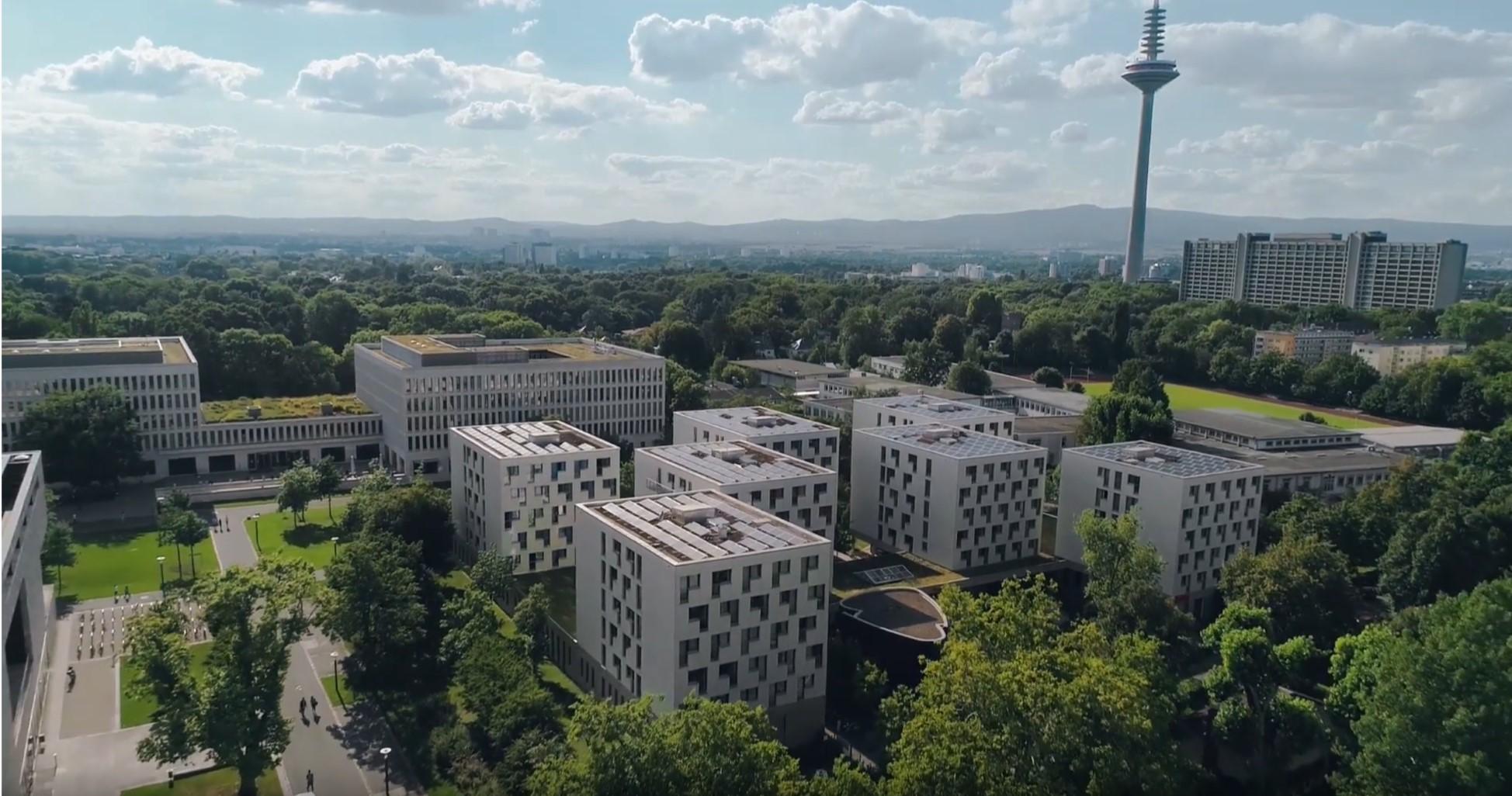 FrankfurtGoethe.jpg